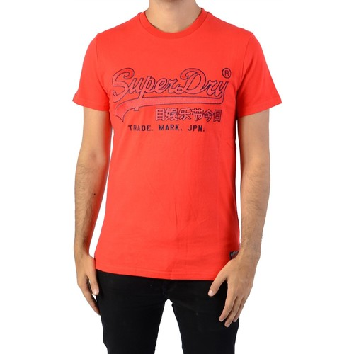 Vêtements Homme T-shirts & Polos Superdry Downhill Racer Applique Rouge