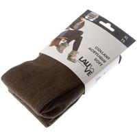 Sous-vêtements Femme Collants & bas Lauve Collant chaud - Acrylique - Ultra opaque - Acrylique soft uni Marron