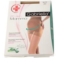 Sous-vêtements Femme Collants & bas Gabriella Collant fin - Transparent - Mamma 20 Chair