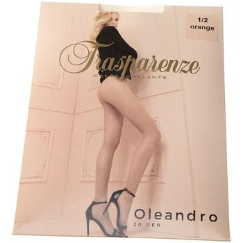 Sous-vêtements Femme Collants & bas Trasparenze Collant fin - Transparent - Oleandro Orange