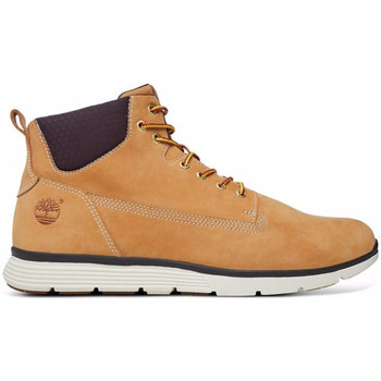 Chaussures montantes Timberland Killington 6 in wheat jr