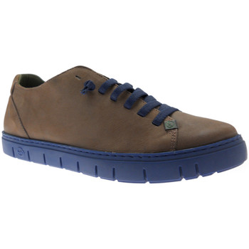 Chaussures Homme Baskets basses Slowwalk SLOWKRAZma marrone