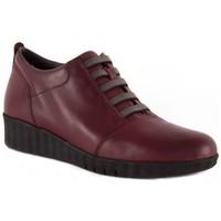 Chaussures Femme Derbies Barritas Zapatos  Autres