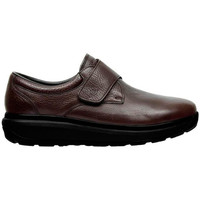 Chaussures Homme Derbies & Richelieu Joya EDWARD M BROWN