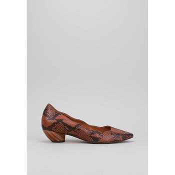 Chaussures Femme Ballerines / babies Roberto Torretta VEGA Marron