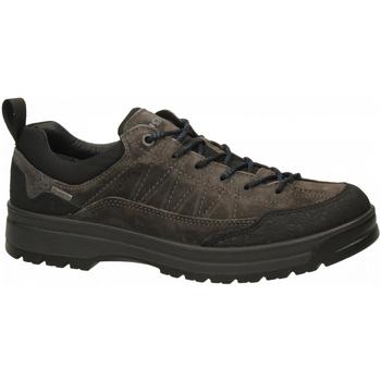Chaussures Homme Randonnée IgI&CO UKRGT 41238 - SC.BRU/GOM/TELA antracite
