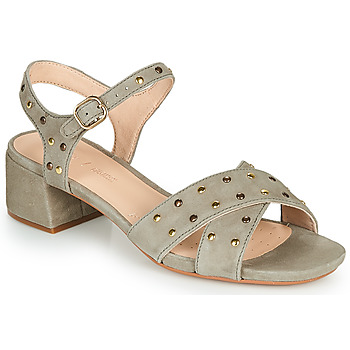 Chaussures Femme Sandales et Nu-pieds Clarks SHEER35 STRAP Taupe / Clou