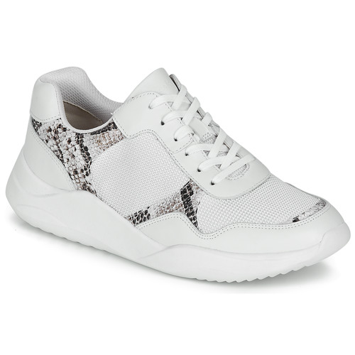 Chaussures Femme Baskets basses Clarks SIFT LACE Blanc / Phyton