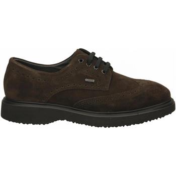 Chaussures Homme Derbies Frau SUEDEidro pepe