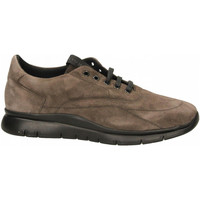 Chaussures Homme Baskets basses Frau WAXY lab