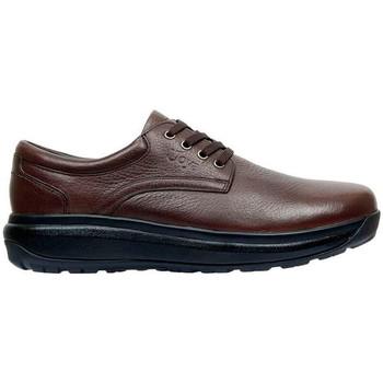Chaussures Homme Derbies & Richelieu Joya Chaussures  MUSTANG 2 BROWN
