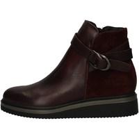 Chaussures Femme Low boots Zen 938107 BORDEAUX