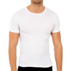 Sous-vêtements Homme Maillots de corps Abanderado Pack-3 t-shirts en fibre m / c blanc Blanc