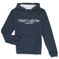 Vêtements Garçon Sweats Teddy Smith SICLASS Bleu