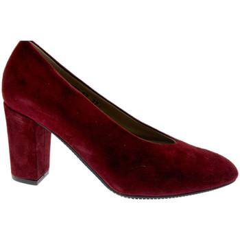 Chaussures Femme Escarpins Calzaturificio Loren LO60887bo nero