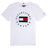 Vêtements Garçon T-shirts manches courtes Tommy Hilfiger KB0KB05718 Blanc