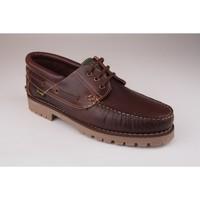 Chaussures Homme Richelieu Fleximax Chaussure homme  3500 marron Marron
