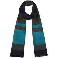 Accessoires textile Femme Echarpes / Etoles / Foulards Qualicoq Echarpe Rayna Vert