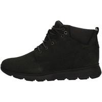 Chaussures Garçon Boots Timberland TB0A1V7U NOIR