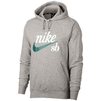 Vêtements Homme Sweats Nike SB Hoody Washed Icon Gris