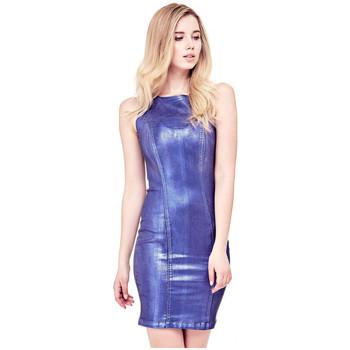 Vêtements Femme Robes courtes Guess Robe Vivetta W81K22 Bleu