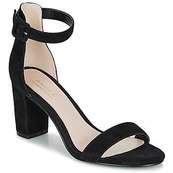 Chaussures Femme Sandales et Nu-pieds André BERTILLE Noir
