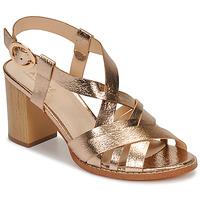Chaussures Femme Sandales et Nu-pieds André PAYTON Doré