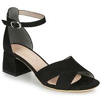 Chaussures Femme Sandales et Nu-pieds André JAYLA Noir