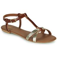 Chaussures Femme Sandales et Nu-pieds André RODHIE Camel
