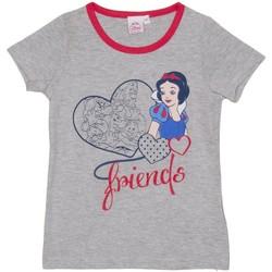 Vêtements Fille T-shirts manches courtes Disney T-shirt m / Short Principesse Gris