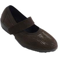Chaussures Femme Derbies Doctor Cutillas Chaussures velcro femme hiver type merce marrón