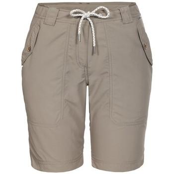 Vêtements Femme Shorts / Bermudas Icepeak LASSIE SHORT FEMME GRIS GRIS