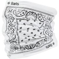 Accessoires textile Femme Echarpes / Etoles / Foulards Barts MULTICOL PAISLY WHITE ONE SIZE TOUR DE COU 2020 PAISLY WHITE