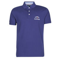 Vêtements Homme Polos manches courtes Tommy Hilfiger ARCH ARTWORK REGULAR POLO Marine