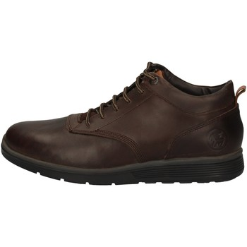 Chaussures Homme Boots Wild Land CROSS MARRON