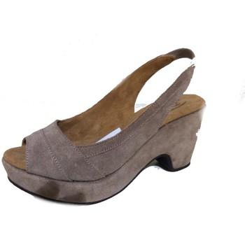 Chaussures Femme Sandales et Nu-pieds Docksteps DSE101879 Multicolore