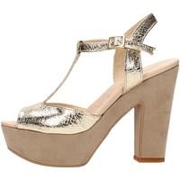 Chaussures Femme Sandales et Nu-pieds David Haron P08TC Multicolore