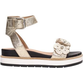 Chaussures Femme Sandales et Nu-pieds Janet Sport 41811 Multicolore