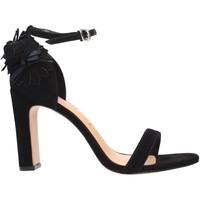 Chaussures Femme Sandales et Nu-pieds Vicenza 410011 PARIS Multicolore