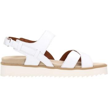 Chaussures Femme Sandales et Nu-pieds Benvado FRANCY Multicolore