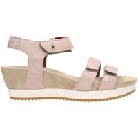 Chaussures Femme Sandales et Nu-pieds Benvado SILVIA Multicolore