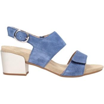 Chaussures Femme Sandales et Nu-pieds Benvado PAOLA Multicolore