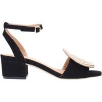 Chaussures Femme Sandales et Nu-pieds Paloma Barcelò NOLANE Multicolore