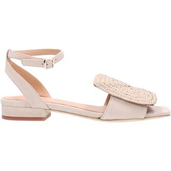 Chaussures Femme Sandales et Nu-pieds Paloma Barcelò NOEMIE Multicolore