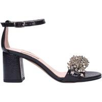 Chaussures Femme Sandales et Nu-pieds Albano 2042 Multicolore