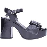Chaussures Femme Sandales et Nu-pieds David Haron TWILA Multicolore