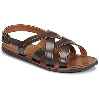 Chaussures Homme Sandales et Nu-pieds André SOLEIL Marron
