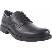 Chaussures Homme Derbies Baerchi Chaussure homme  1800-ae noir Noir