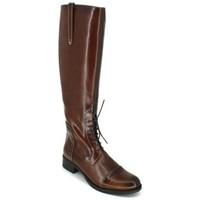Chaussures Femme Bottes ville Luis Gonzalo 4932M Botas de Montar de Mujer Marron