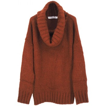 Vêtements Femme Pulls Anonyme | Pull Demeter, marron | ANY_P259FK161_TOBACCO Marron